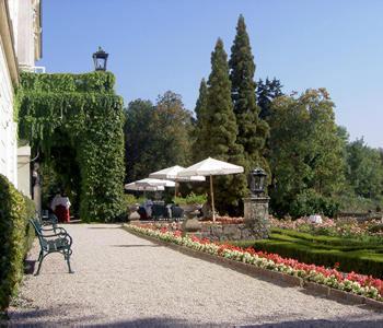 A salisburgo studiano assieme i problemi del mondo for General garden services